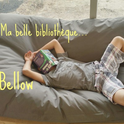 Ma belle bibliothèque : Saul-Bellow (Lachine)