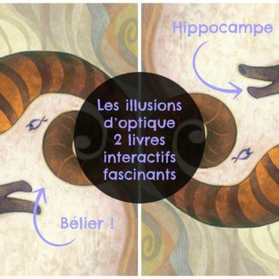 Les illusions d'optique : 2 livres interactifs fascinants