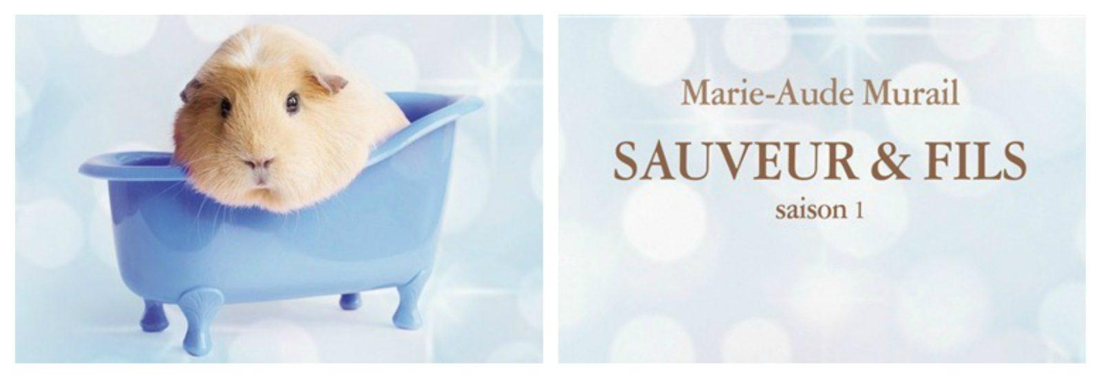 Sauveur & fils – roman pour ado de Marie-Aude Murail