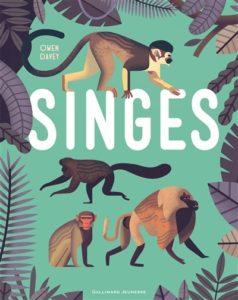 Singes - documentaires sur les animaux