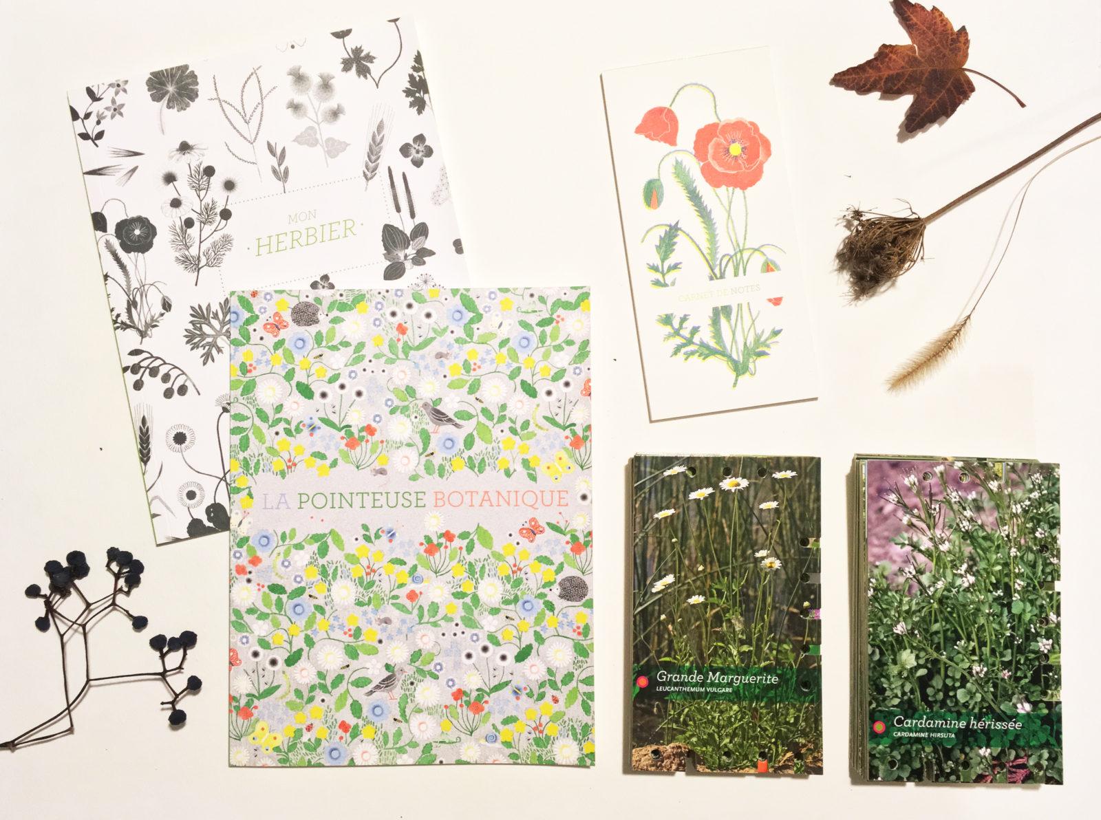La pointeuse botanique : le coffret parfait pour les naturocurieux