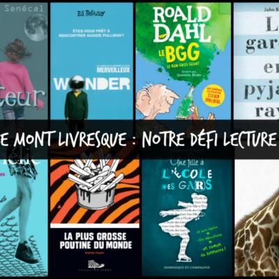 Projet du Mont Livresque: notre défi lecture en classe !
