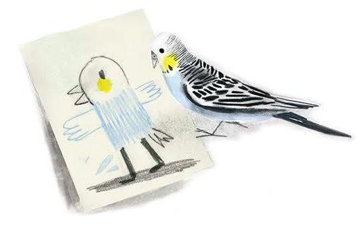 L'oiseau de Colette, non mais… quel oiseau rare!